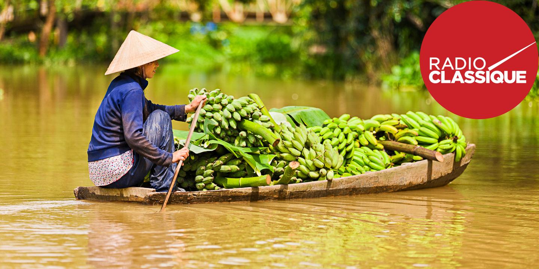 Music Along Vietnamese Shores