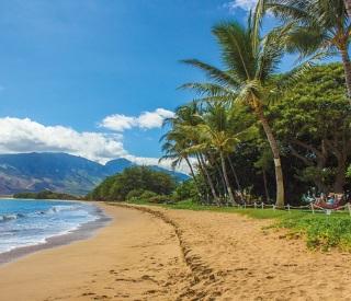 Hawaii,Tahiti & Bora Bora