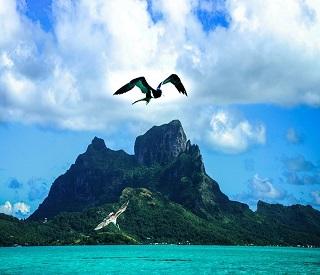 NZ, Tahiti & the Hawaiian Islands