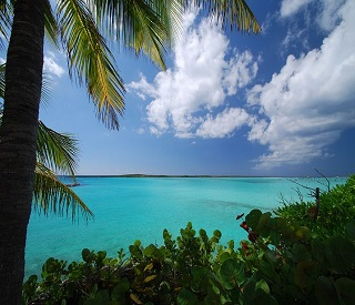 Perfect Days in the Bahamas