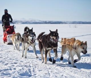 The Frontier of Alaska!