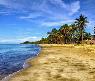 Fiji Discoveries