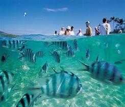 Tonga & Fiji Cruising on Aria
