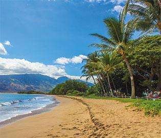 Hawaii, Tahiti & South Pacific