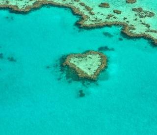 Bay of Islands & the Whitsundays