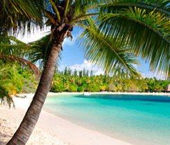 New Caledonia Spirit