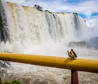 Peaks, Fjords & the Majestic Iguazu Falls