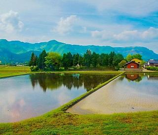 Fukuoka & Kumamoto Adventure