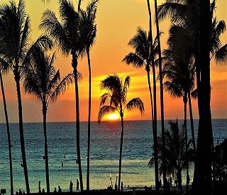 Fancy a Hawaiian Christmas?