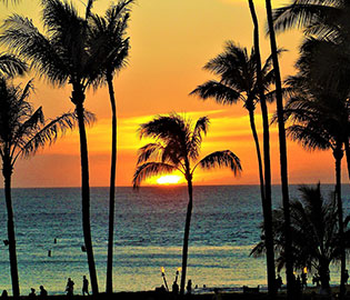 South Pacific & Hawaii