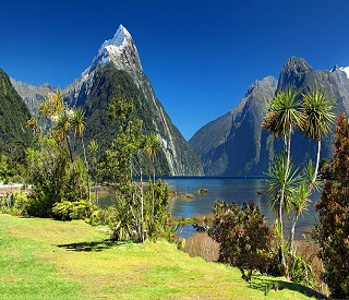Discover the Beauty of New Zealand