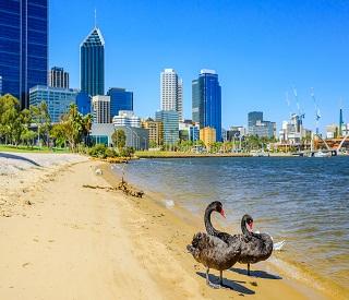 Sydney Harbour to Perth Shores