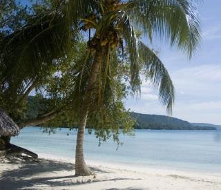 Majestic New Caledonia