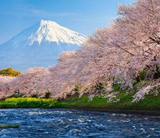 Highlights of Japan - Tour 03B
