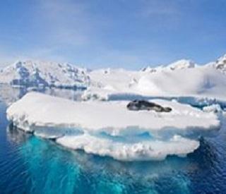 Falkland Islands, South Georgia and Antarctica and Solar Esclipe!