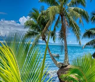 Tahitian Treasures and Hawaiian Shores