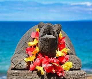 Aloha Hawaii and French Polynesia