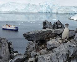 Antarctic Grandeur